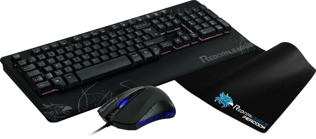 RebornLeague BirdSteam - Pack Clavier/Souris - Cybertek.fr - 0